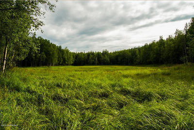 Wasilla Residential Lots & Land For Sale: Tr A Tex-Al