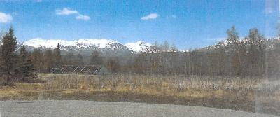Sutton Residential Lots & Land For Sale: L8 Glenn Highway Mile 59