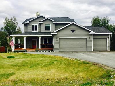 Wasilla Single Family Home For Sale: 5896 E Fetlock Drive