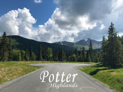 Anchorage Residential Lots & Land For Sale: L8 B4 Potter Highlands Drive