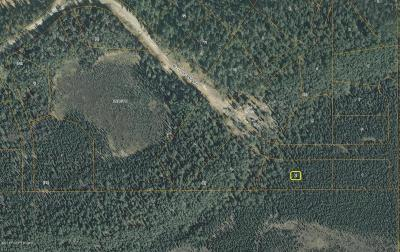 Wasilla Residential Lots & Land For Sale: 3730 Little Rain Road