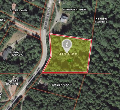Chugiak Residential Lots & Land For Sale: L23 Homestead Road