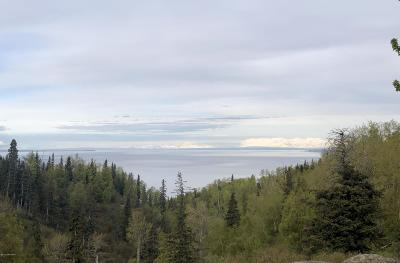 Anchorage Residential Lots & Land For Sale: 6001 Bulgaria Drive
