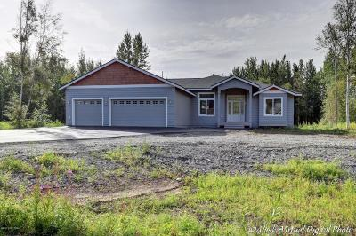 Anchorage, Eagle River, Palmer, Wasilla Single Family Home For Sale: NHN E Rabbit Creek Road