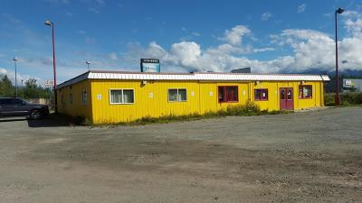Wasilla Commercial For Sale: 6399 E Blue Lupine Drive