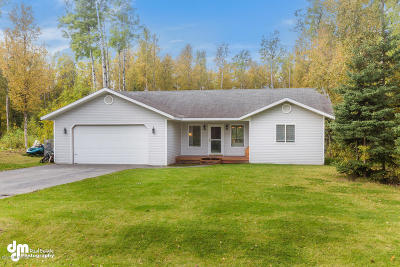 Wasilla Single Family Home For Sale: 7390 S Turner