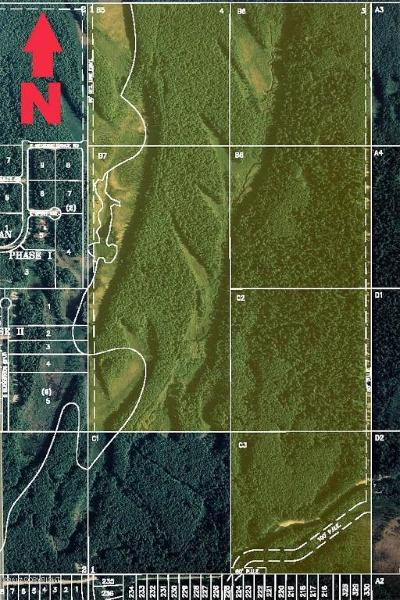Big Lake, Palmer, Sutton, Wasilla, Willow Residential Lots & Land For Sale: B007 Medicine Dance Road