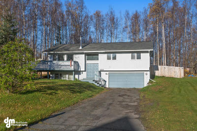 Chugiak Single Family Home For Sale: 22839 Northwoods Drive