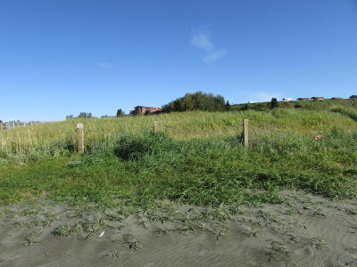Kenai Residential Lots & Land For Sale: 1012 Kenai Avenue