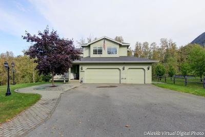Chugiak Single Family Home For Sale: 24205 Ski Road