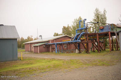 Big Lake Commercial For Sale: 2534 S Beaver Lake Road