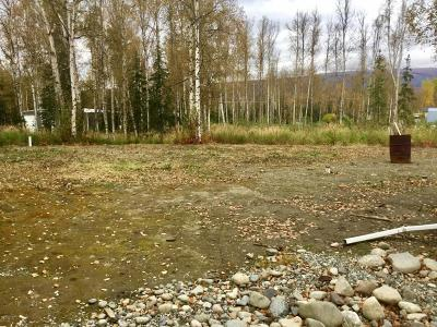 Anchorage, Chugiak, Eagle River, Palmer, Wasilla Single Family Home For Sale: 2540 N Pittman Road