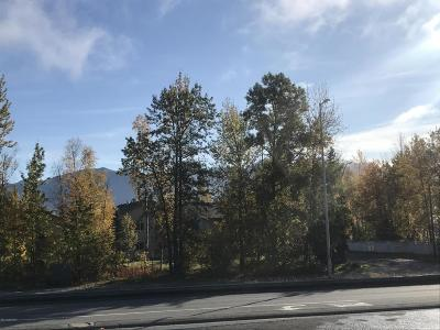 Anchorage AK Condo/Townhouse For Sale: $111,900
