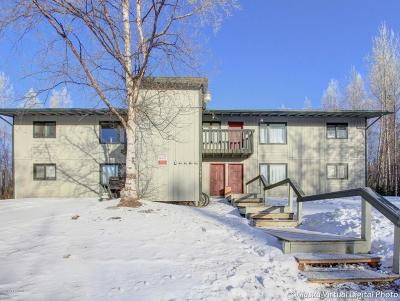 Wasilla Multi Family Home For Sale: 3741 W Tweed Court