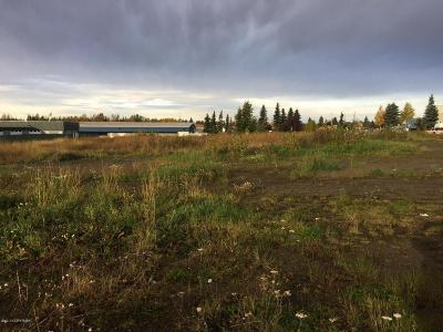 Anchorage Residential Lots & Land For Sale: L1 B1 Lucky Huffman