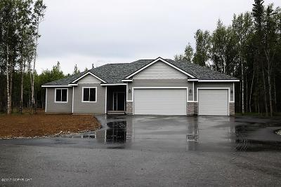 Wasilla Single Family Home For Sale: 8718 E Wolf Creek Road