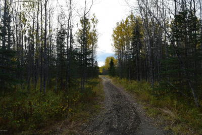 Soldotna Residential Lots & Land For Sale: 48785 Rustic Avenue
