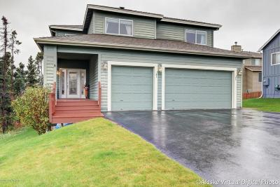 Anchorage Single Family Home For Sale: 16208 Headlands Circle