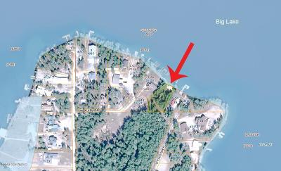 Big Lake Residential Lots & Land For Sale: L9 No Road Splinter Addition