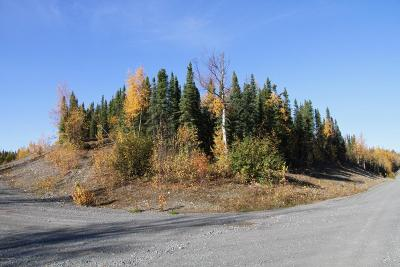Soldotna Residential Lots & Land For Sale: L6 B1 Steele Road