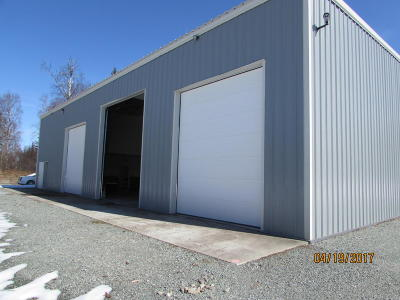Big Lake Commercial For Sale: 20357 W Susitna Parkway