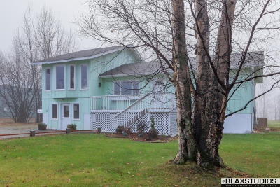 Wasilla Single Family Home For Sale: 3750 E Steven Drive
