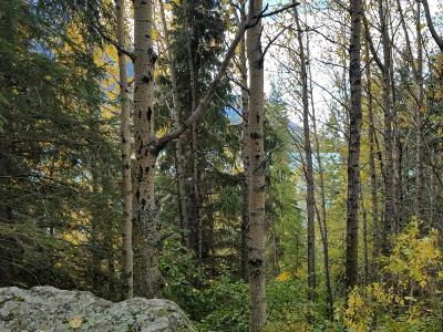 Soldotna Residential Lots & Land For Sale: L10 B11 Caribou Island