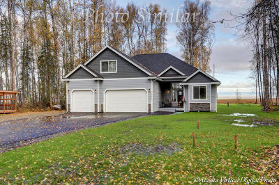 Wasilla Single Family Home For Sale: 1115 Sun School Circle