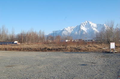 Palmer AK Residential Lots & Land For Sale: $256,000