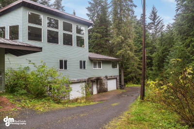 Girdwood, Indian Single Family Home For Sale: 1008 Timberline Drive