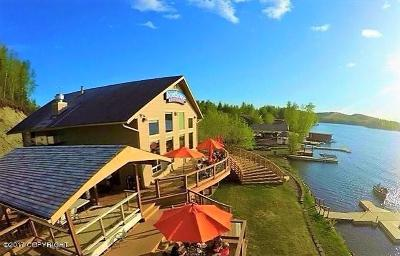 Big Lake Commercial For Sale: 5268 S Big Lake Road