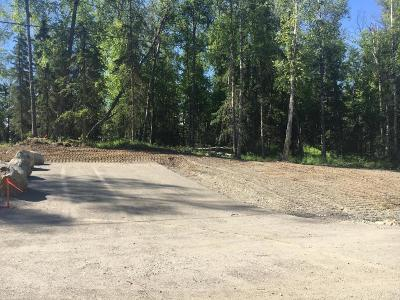 Wasilla Residential Lots & Land For Sale: 10074 Clay-Chapman Road