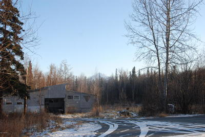 Wasilla Residential Lots & Land For Sale: 555 Pass The Buck