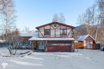 Eagle River Single Family Home For Sale: 14543 Terrace Lane