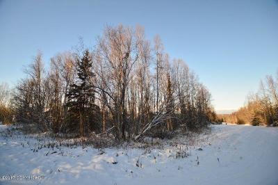 Anchorage, Chugiak, Eagle River Residential Lots & Land For Sale: L16 B2 Skyline View