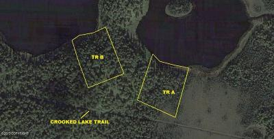 Big Lake, Palmer, Sutton, Wasilla, Willow Residential Lots & Land For Sale: Tr A Hock Lake