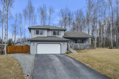 Wasilla Single Family Home For Sale: 2825 S Primrose Circle
