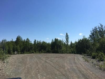 Big Lake Residential Lots & Land For Sale: 11320 Upper Birch Drive