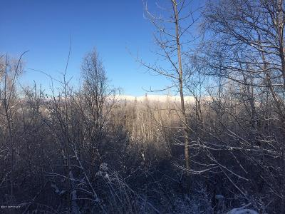 Wasilla Residential Lots & Land For Sale: 5530 Bideford Boulevard