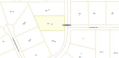 Big Lake Residential Lots & Land For Sale: 878 Old Toby Road
