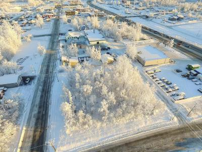 Wasilla Commercial For Sale: 240 E Herning Avenue