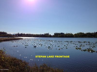 Big Lake Residential Lots & Land For Sale: Tr B Drowsy Drive