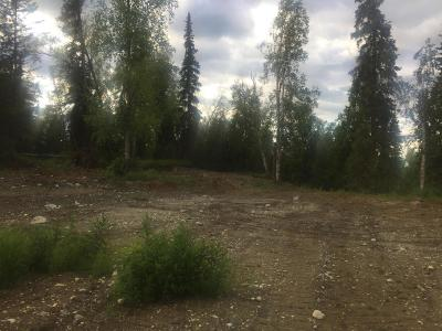 Residential Lots & Land For Sale: B002 Lesser Canada