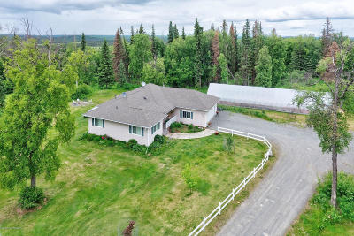 Soldotna Single Family Home For Sale: 37820 Country Woods Circle