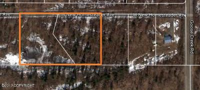 Wasilla Residential Lots & Land For Sale: 17552 New Homesteader Avenue