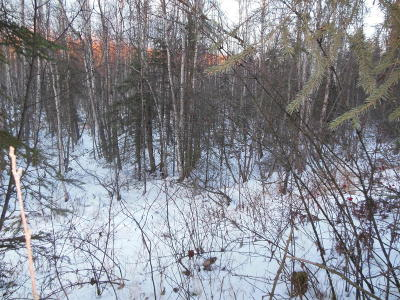 Chugiak Residential Lots & Land For Sale: L18 Glacier Vista Road