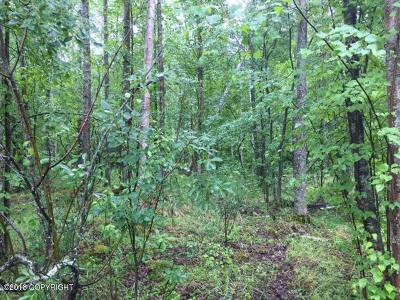Chugiak Residential Lots & Land For Sale: Tract A B1 Old Glenn Highway