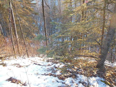 Chugiak Residential Lots & Land For Sale: Lot 31 TBD-Glacier Vista Road