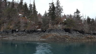 Residential Lots & Land For Sale: 51647 Halibut Cove Rem SW