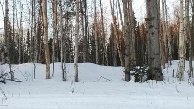 Big Lake, Palmer, Sutton, Wasilla, Willow Residential Lots & Land For Sale: 3401 Rainbow Street